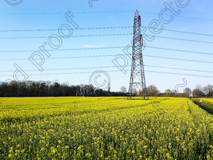 Pylon & yellow-001 