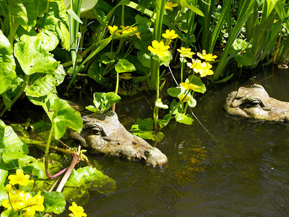 West Malling-20 